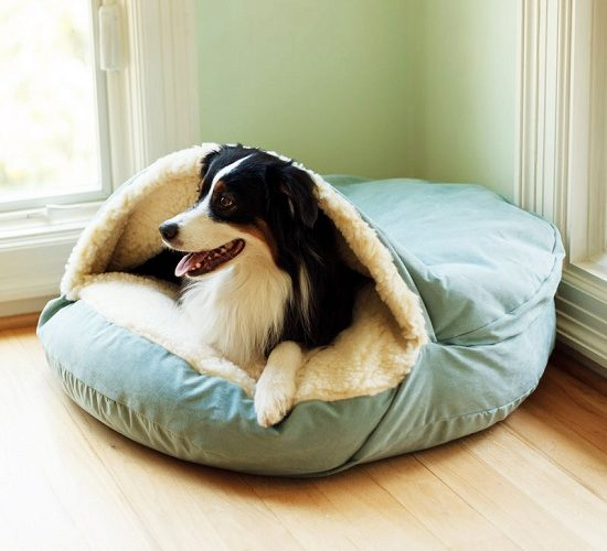 How to chooes the best cozy cave dog bed